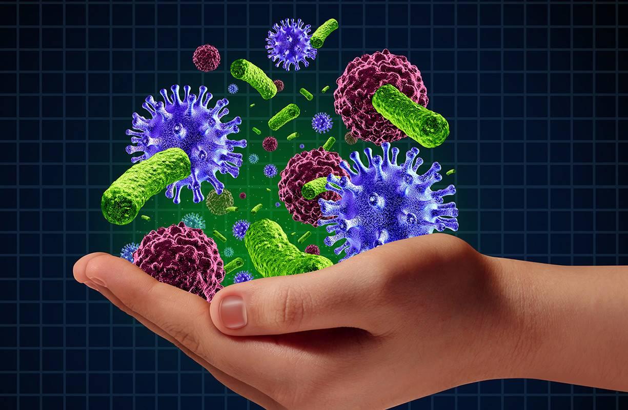 Immunostimolanti - stimolazione del sistema immunitario