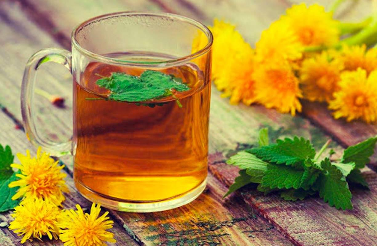 Dopo le festività, come depurarsi con l'uso di piante medicinali.