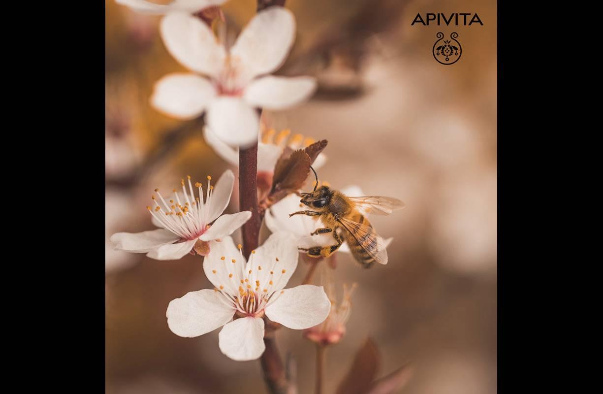 APIVITA - MAGGIO mese dell'ape