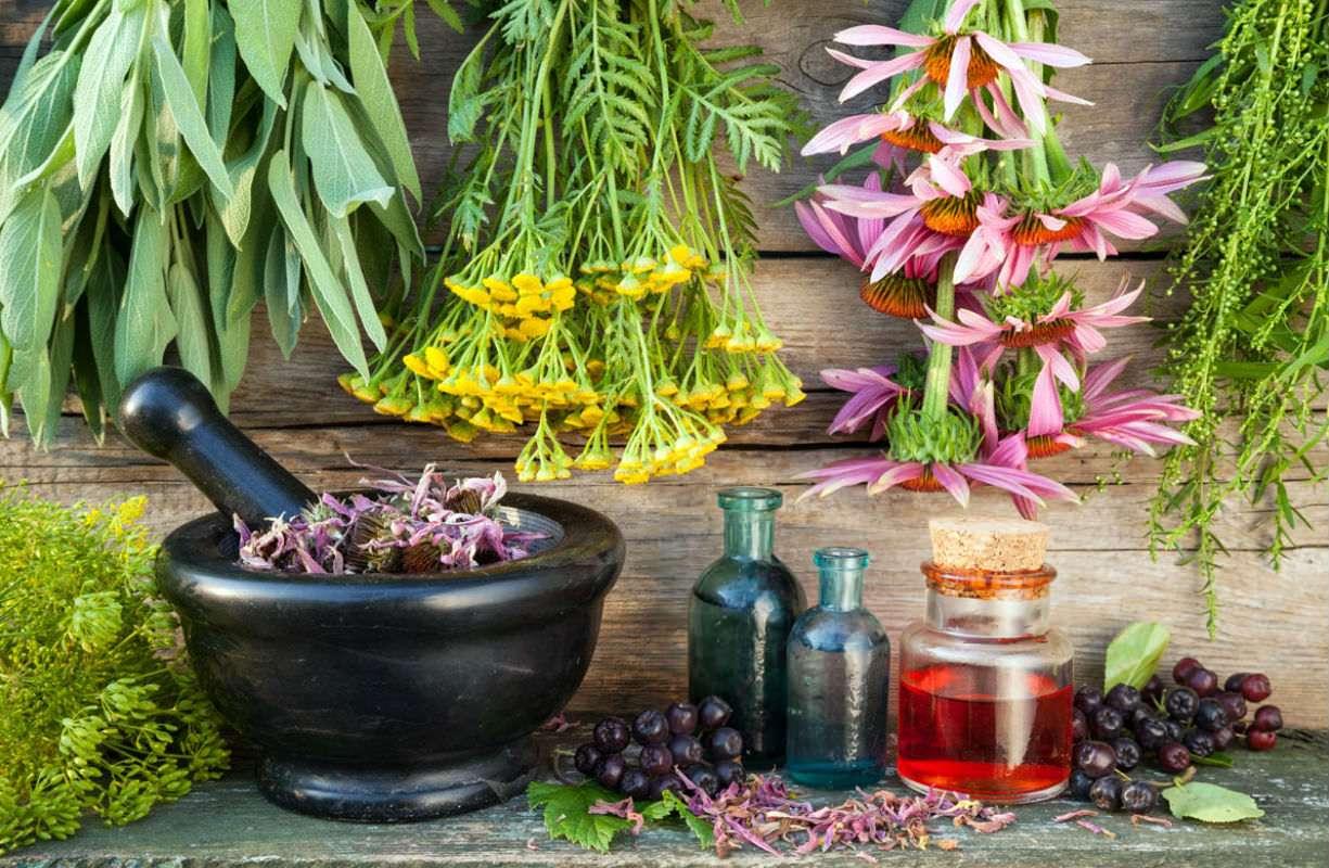 Drenaggio e depurazione corpo con l'utilizzo della fitoterapia