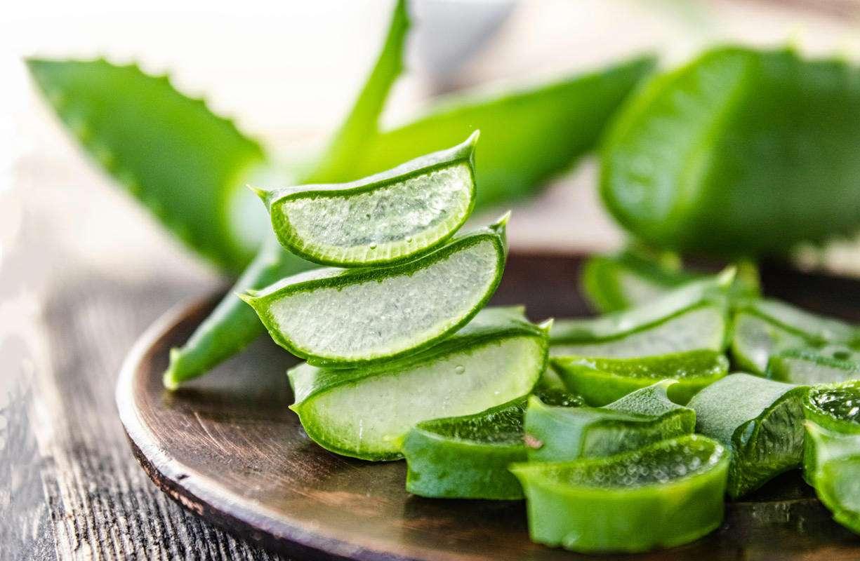 Proprietà dell'Aloe, benefici su organismo, pelle e capelli
