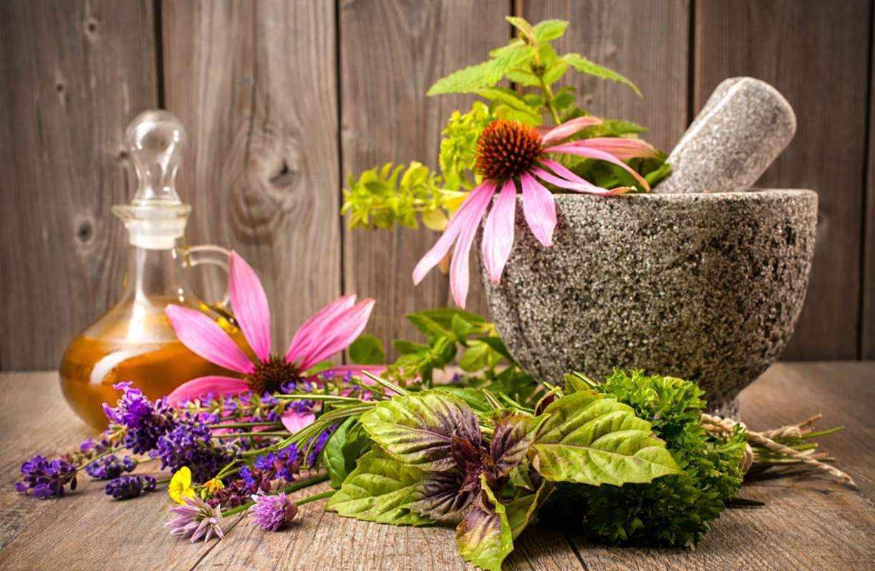 Ingredienti naturali per rinforzare il sistema immunitario