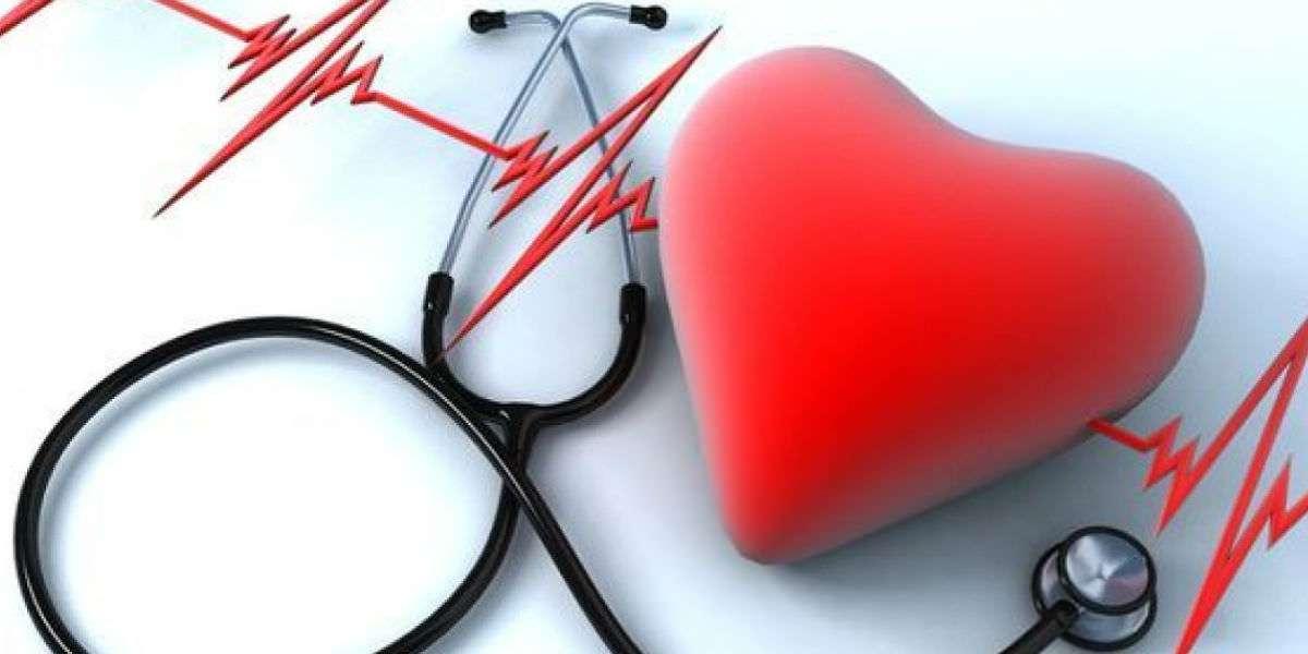 Holter ECG ( 24/48/72 h )