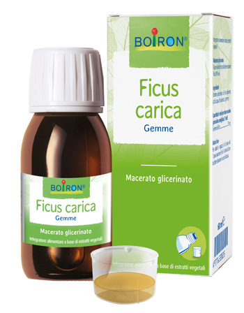 FICUS CARICA MG 60ML INT