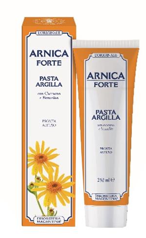 ARNICA FORTE PASTA ARGILL250ML