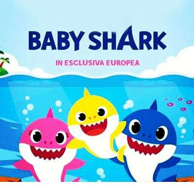Euphidra Amido mio baby shark