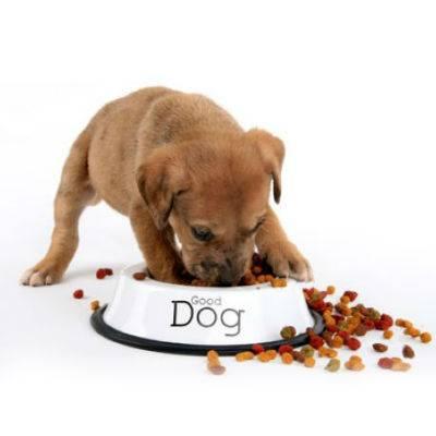 D Dog ogni due prodotti una ciotola in omaggio