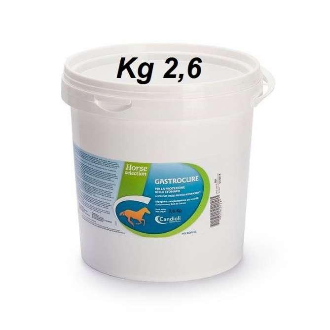 GASTROCURE 2,6kg