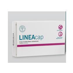 LFP LINEATAB 60CPR