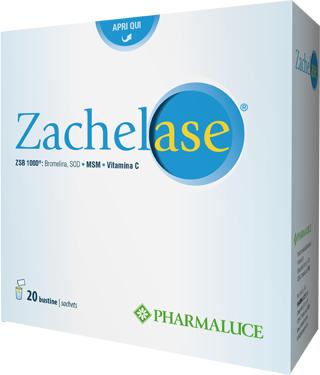 ZACHELASE 20BUST