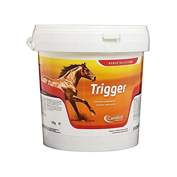 TRIGGER 1kg